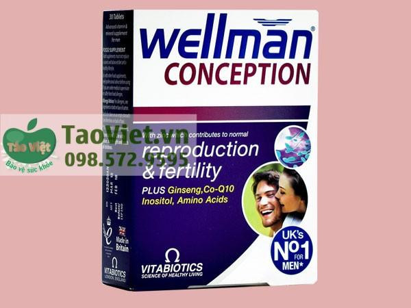wellman conception