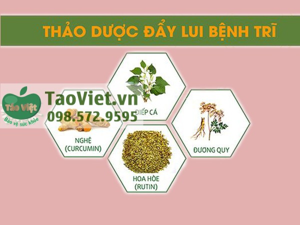 thang_tri_tan_thong_4