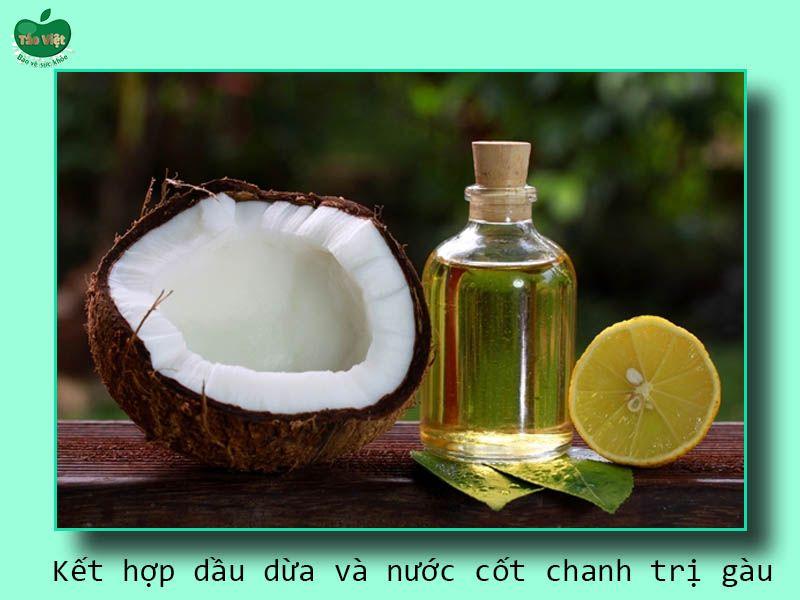 Kết hợp dầu dừa và nước cốt chanh trị gàu