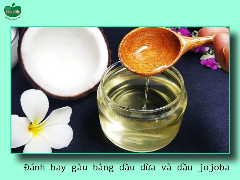 Đánh bay gàu bằng dầu dừa và dầu jojoba