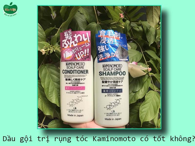 Dầu gội trị rụng tóc Kaminomoto có tốt không?