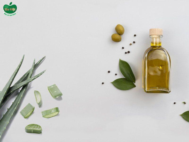 Kết hợp nha đam và dầu olive trị gàu